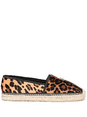 Dolce & Gabbana leopard print espadrilles